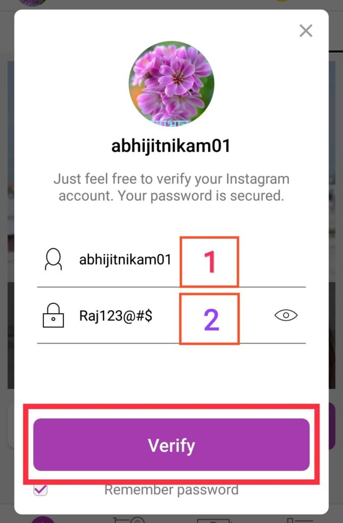Login Your Fake Instagram Account